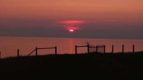 Cape St Mary's  NL