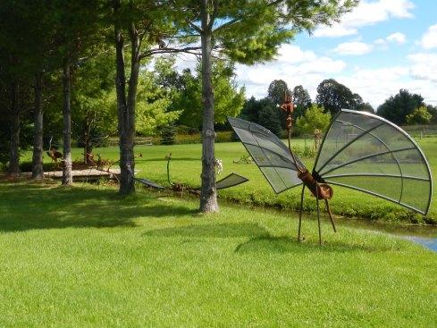 seriously large flying bug
