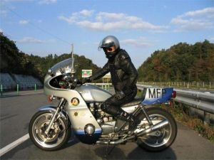 mad_max_goose_bike