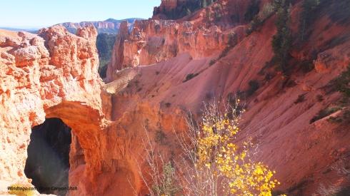 DSCF5331ew Bryce Canyon